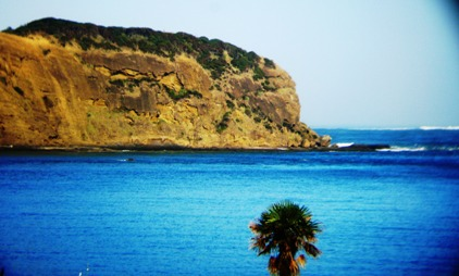 South Head of Hokianga Harbour from Opononi