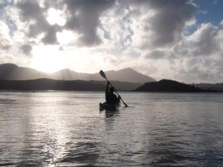Kayaking, stargazing, bonecarving and other Hokianga activities